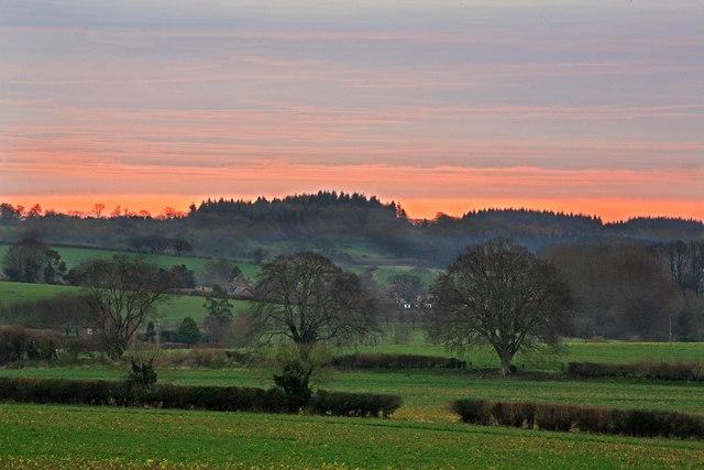 Manor farm & Cranborne at dawn