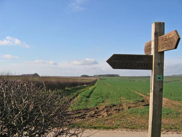 Footpath Towards Foxcovert Farm