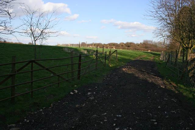 Field entrance at Glaston