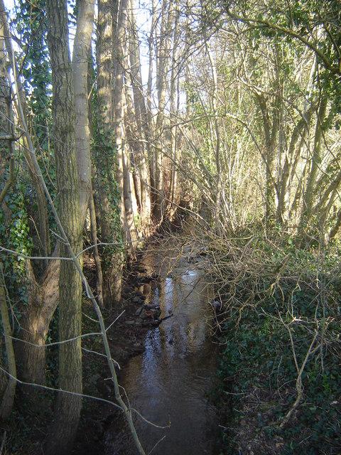 Ffrwd Brook from bridge