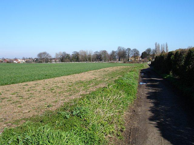 Starveacre Lane