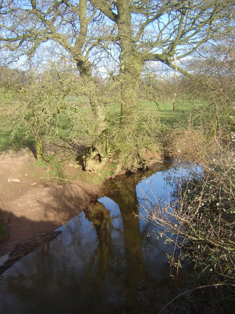 Pant Brook from the road