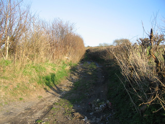 Track to Kilkenny Lane