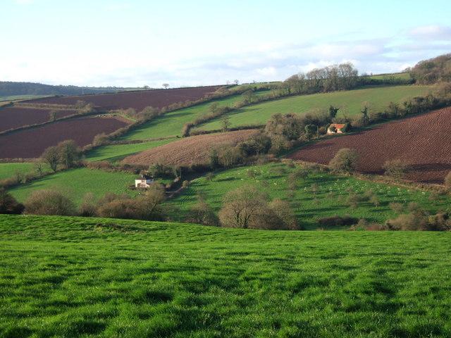 Wood Farm, Ashcombe