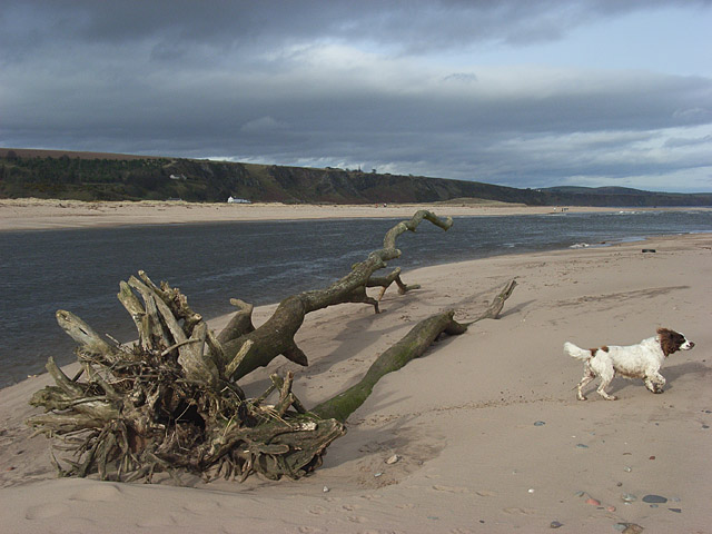 The mouth of the River North Esk