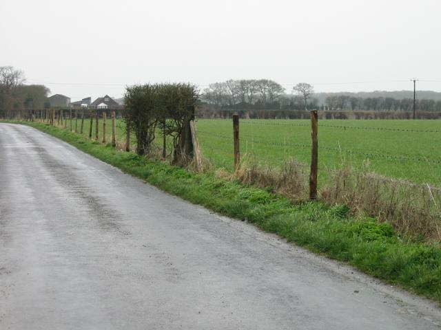 View NW along Singledge Lane
