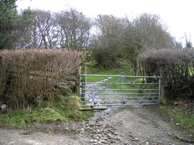 Trackway at Morfydd
