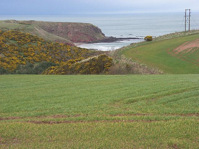 Farmland above Pease Dean