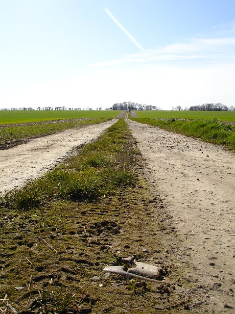 The long straight track