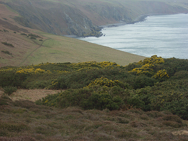 Coastline at Dowlaw