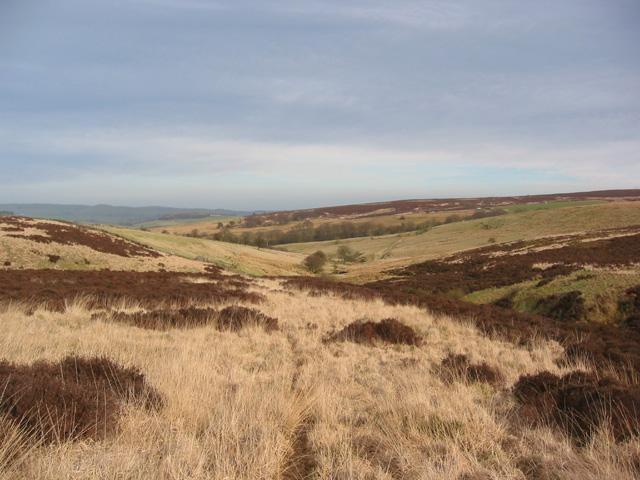 Moorland on Middle Hills