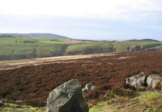 View over the Upper Hulme valley from Dry Stones