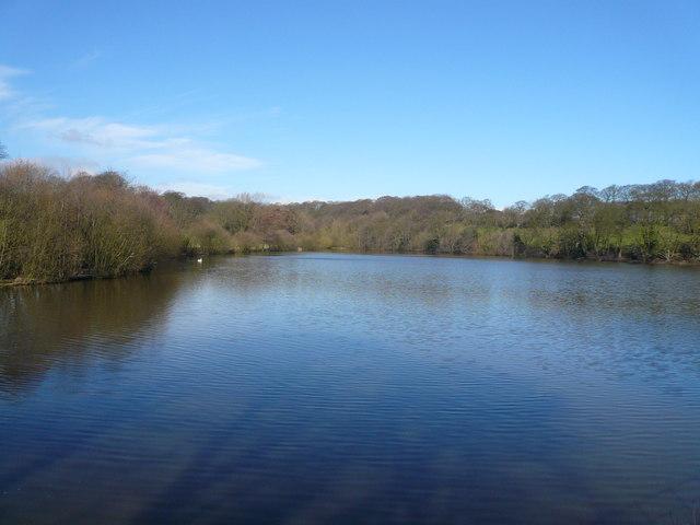 Stubbing Great Pond