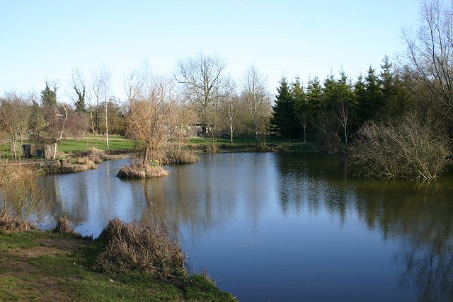 Fish pond near Clare