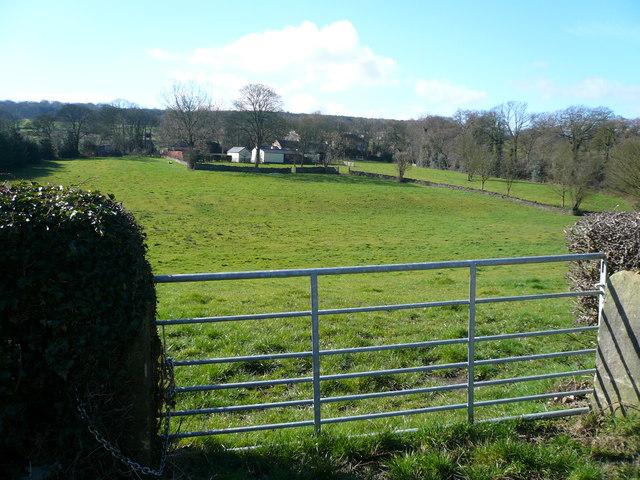 Pearce Lane - View across field to Malthouse Lane