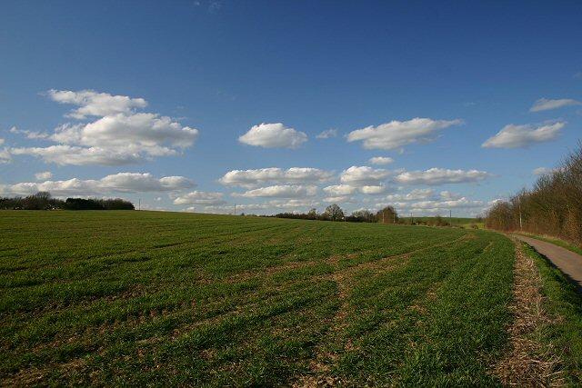 Track to Bench Barn Farm