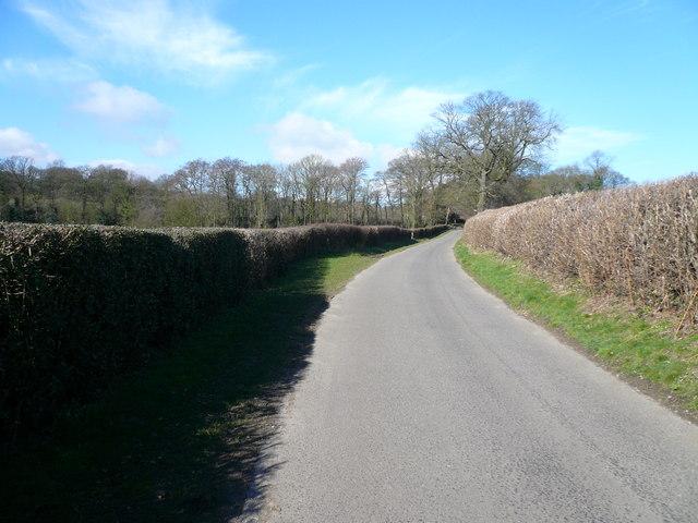 Pearce Lane