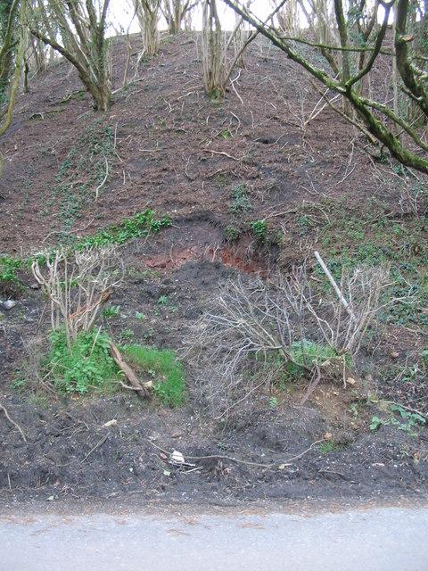 Small Landslip near Splott Farm