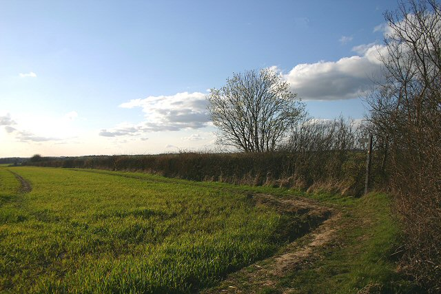 Footpath to Stoke-by-Clare