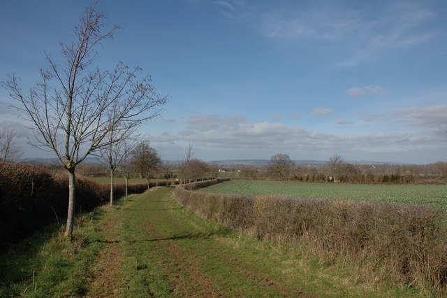 Bridleway to the south of Ivington Park