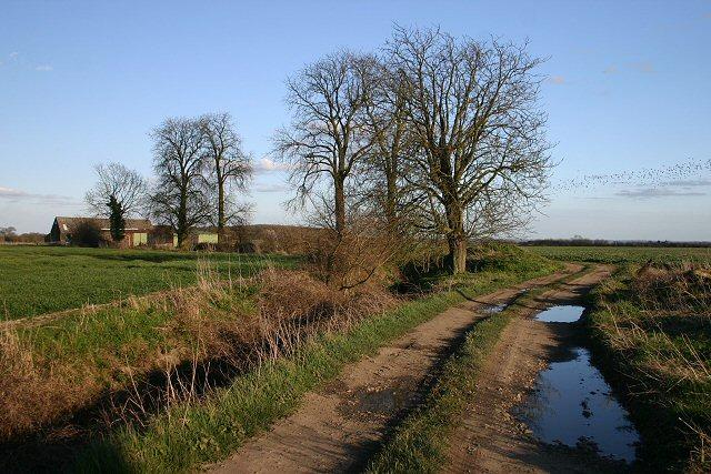 Footpath to Lynn's Farm