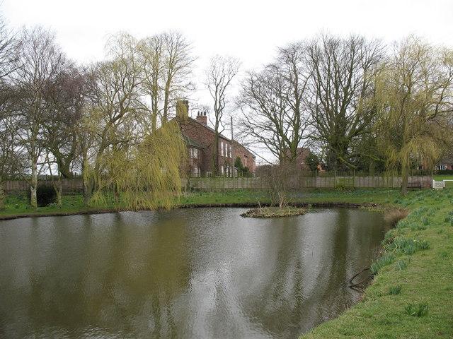 Townend pond, Stillington