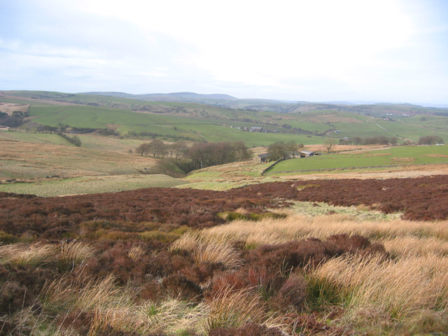 View towards Boarsgrove