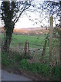 ST7059 : Footpath from Withyditch by Phil Williams