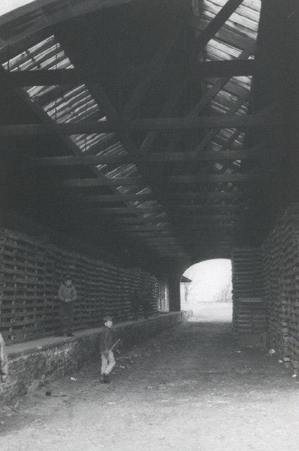 The Original Newtyle Station