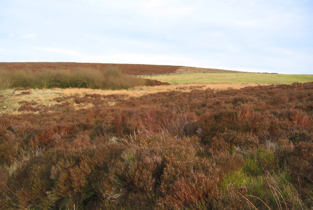 Moorland near Round Knowl