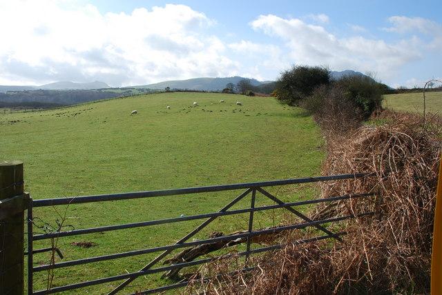 Tir amaethyddol - Farmland  Glan y Gors