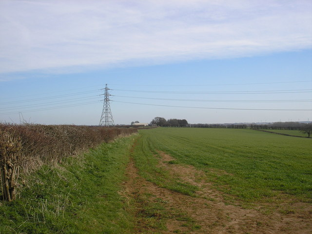 Arable field on the Boughton Estate, Kettering