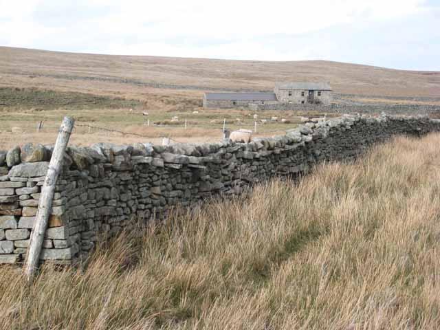 Leading Stead Bottom, Arkengarthdale