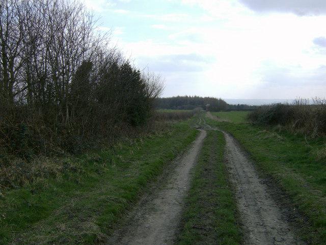 Caldron Mill Road, near Fadmoor