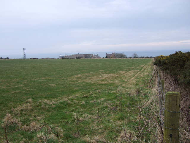 Auquorthies and nearby mast