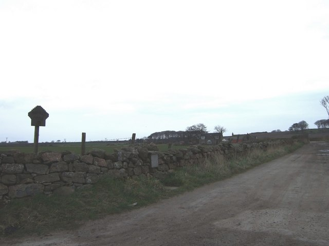 Back road to Muchalls Castle