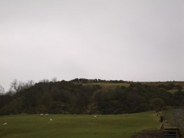 Hill behind Mid Auchencarroch Farm