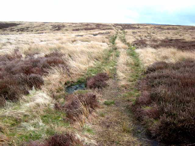 Bridleway on the Rigg