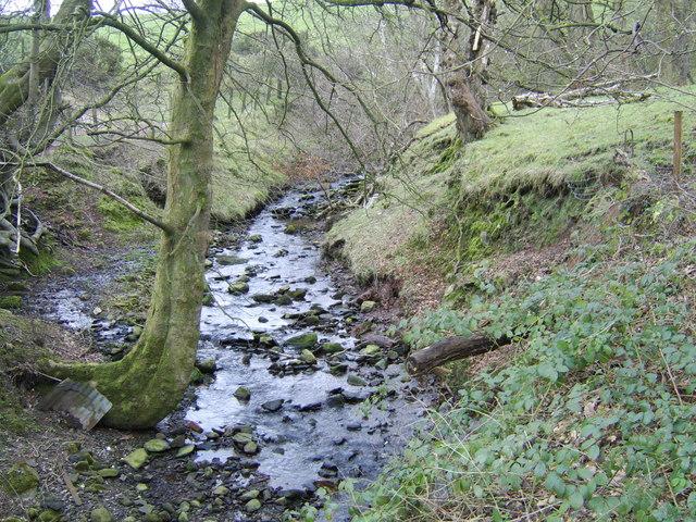 Stream near Blairquhomrie