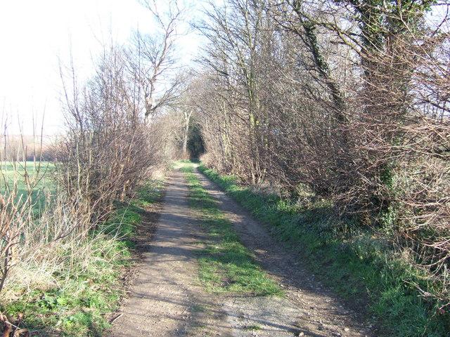 Willow Lane, Kirkthorpe