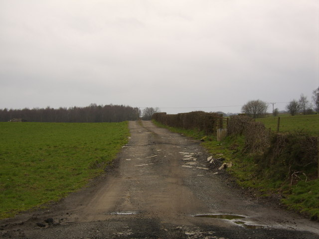Small farming road