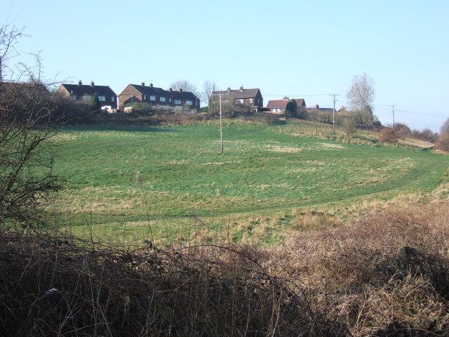 'Back Field', Kirkthorpe