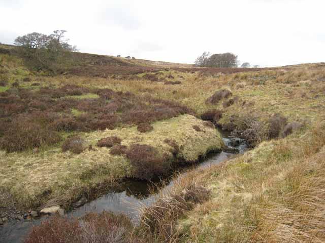 Thwaite Beck