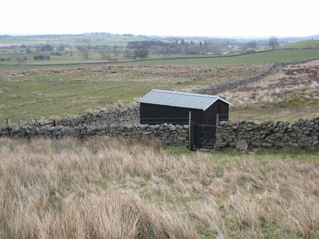 Hut on Scargill Low Moor