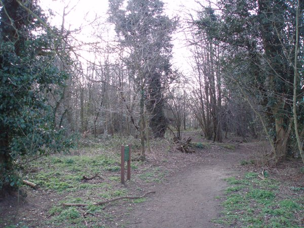 The entrance to Spring Plantation