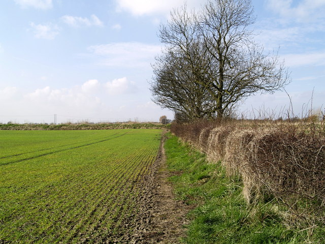 Footpath to the Market Weighton Canal