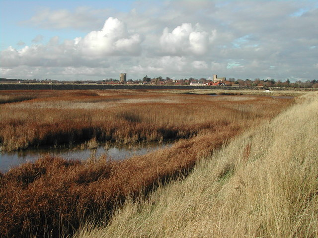 The Airfield Marsh reedbed on Orford Ness
