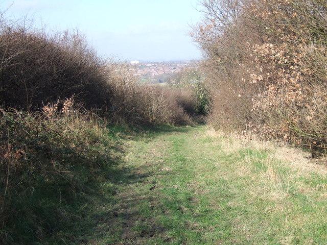 Green Lane, Kirkthorpe