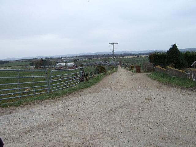 Track to Nether Burnshaugh