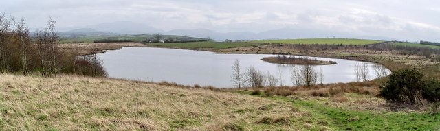 Pond in Reinstated Opencast Land